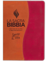 bibbia-studio-spirito-vita-marrone-ruggine