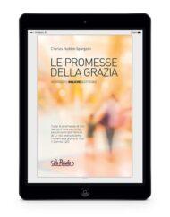 le-promesse-della-grazia