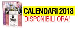 calendari-mini-banner