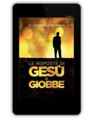 risposte_giobbe