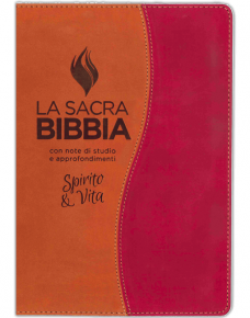 bibbia-studio-spirito-vita-marrone-ruggine
